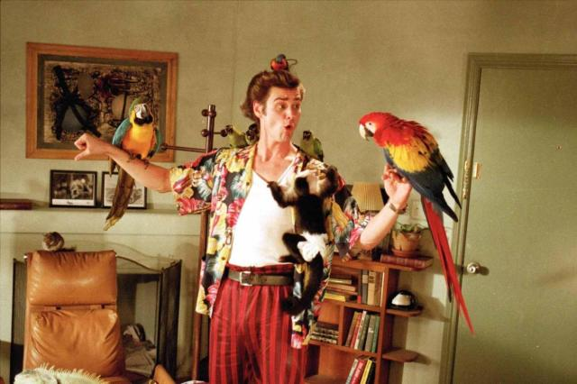still-of-jim-carrey-in-ace-ventura-pet-detective-1994-large-picture.jpg